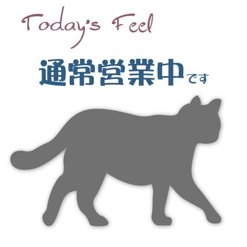 f:id:haruusagi_kyo:20181026183708j:plain