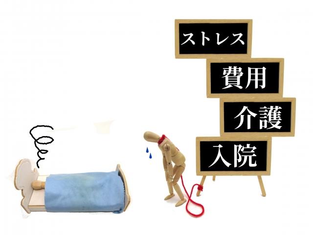 f:id:haruusagi_kyo:20190116191005j:plain