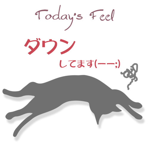 f:id:haruusagi_kyo:20190301185416j:plain