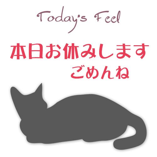 f:id:haruusagi_kyo:20190316075318j:plain