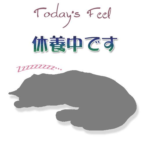 f:id:haruusagi_kyo:20190628052507j:plain