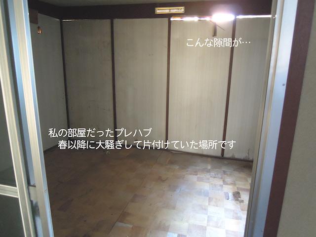 f:id:haruusagi_kyo:20191220172727j:plain