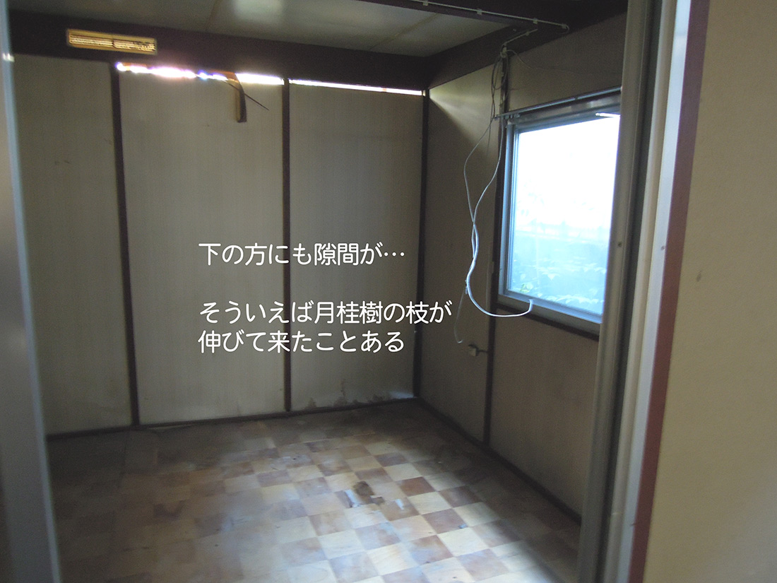 f:id:haruusagi_kyo:20191220172926j:plain