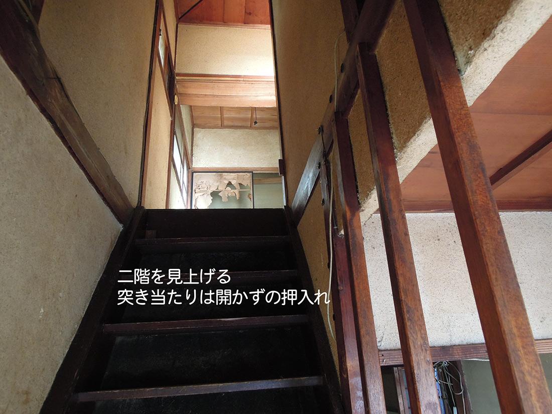 f:id:haruusagi_kyo:20191220172953j:plain