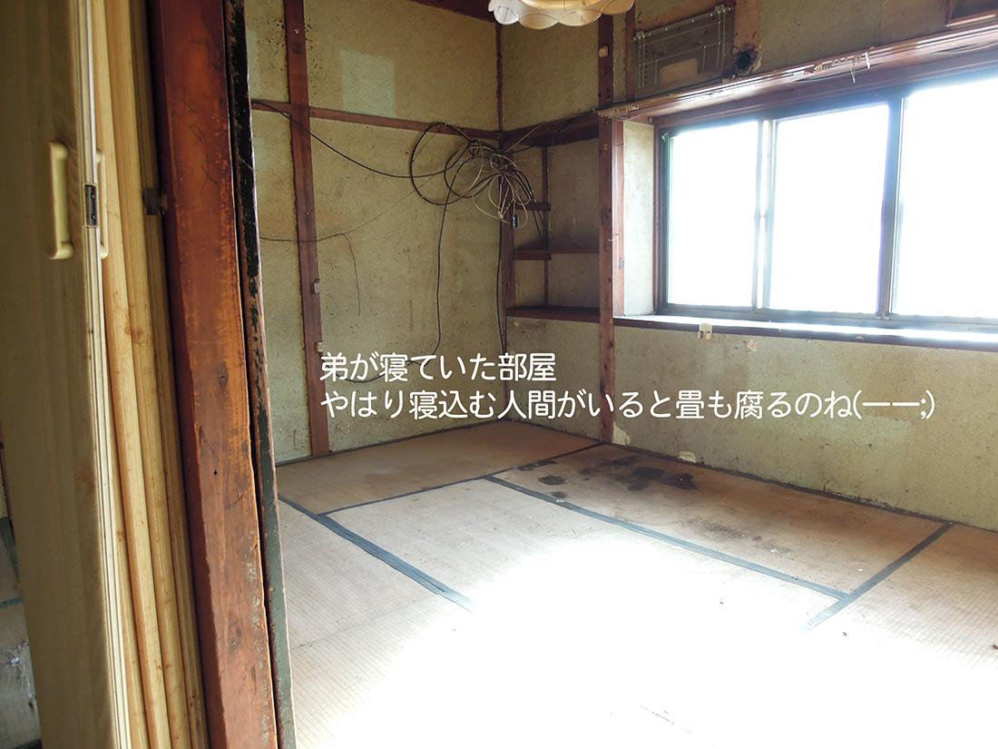 f:id:haruusagi_kyo:20191220173043j:plain