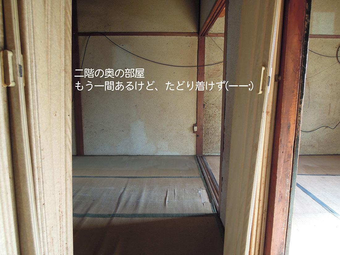 f:id:haruusagi_kyo:20191220173101j:plain