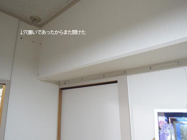 f:id:haruusagi_kyo:20191229194533j:plain