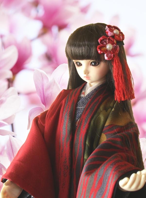 f:id:haruusagi_kyo:20200205065857j:plain