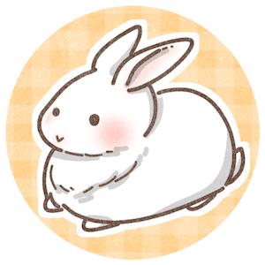 f:id:haruusagi_kyo:20200429073937j:plain