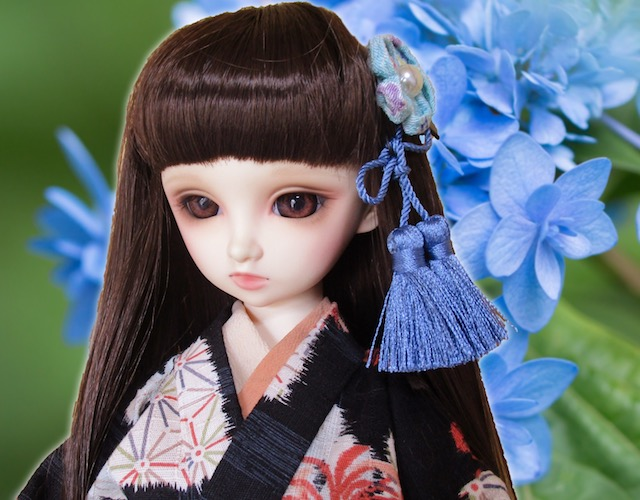 f:id:haruusagi_kyo:20200604082228j:plain