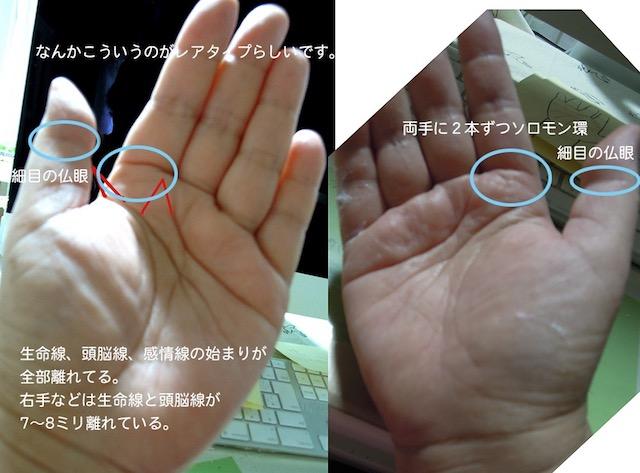 f:id:haruusagi_kyo:20200702183719j:plain