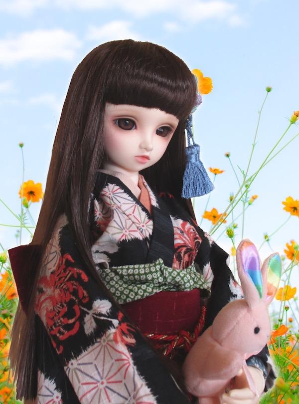 f:id:haruusagi_kyo:20200922190151j:plain