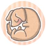 f:id:haruusagi_kyo:20210415052900j:plain
