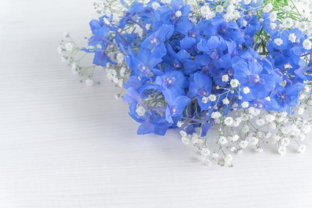 f:id:haruusagi_kyo:20210923220336j:plain
