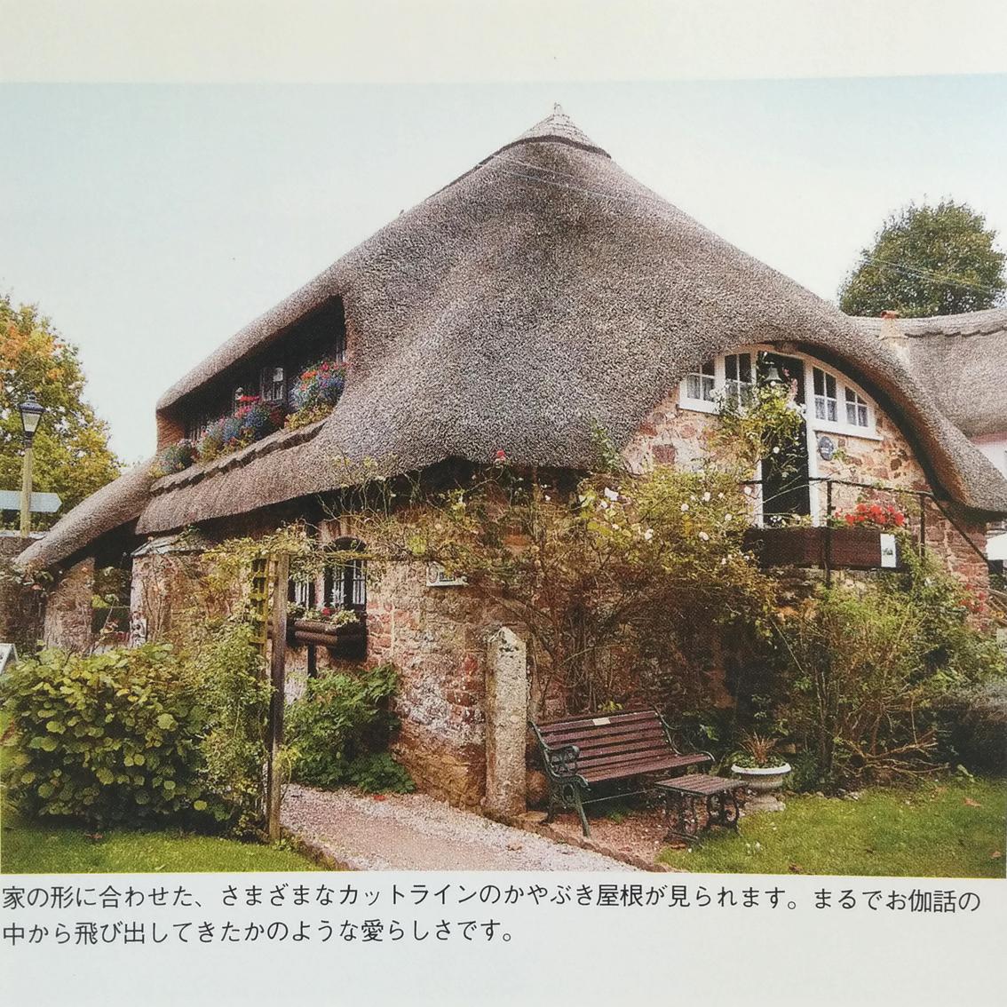 f:id:haruya-oyako:20210515164019j:plain