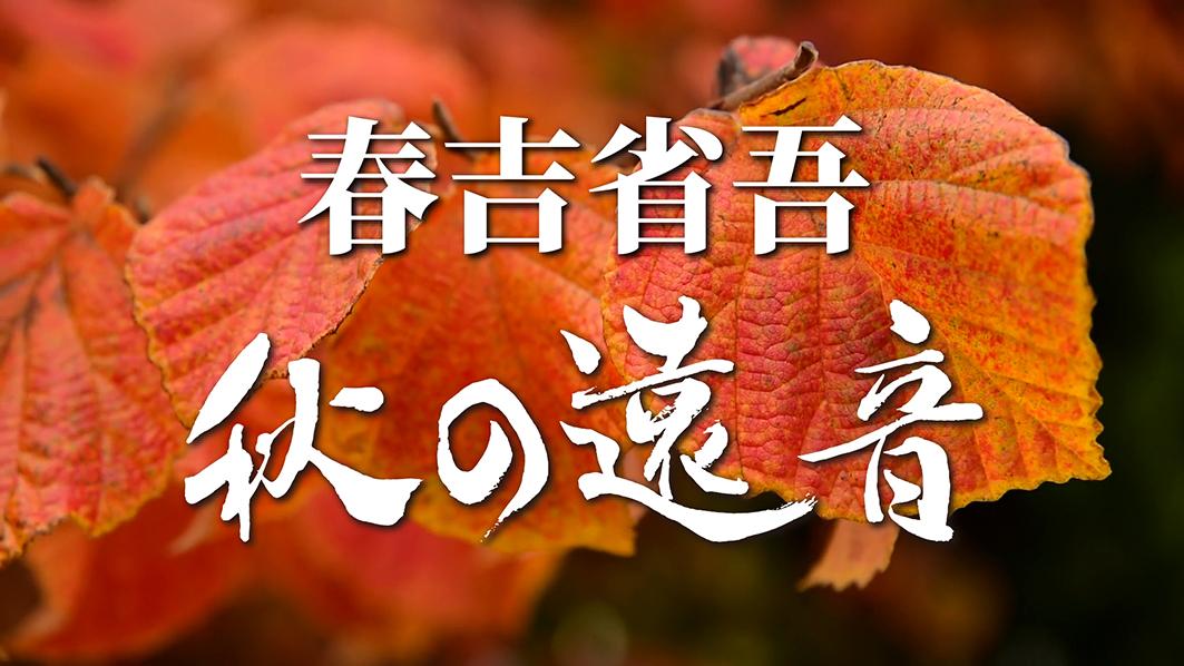 f:id:haruyoshi01:20201025142733j:plain