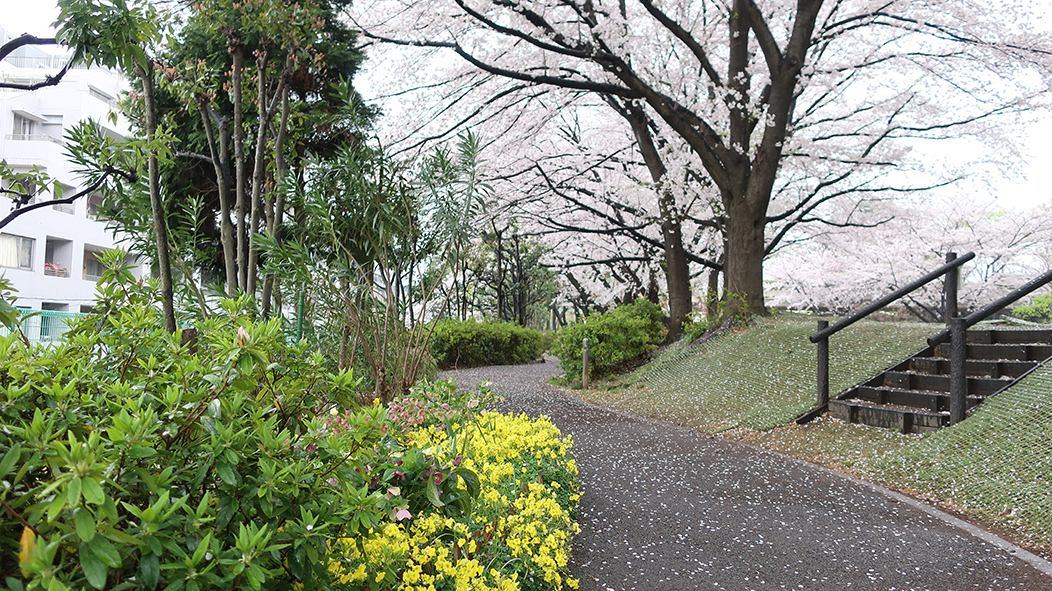 f:id:haruyoshi01:20210413213955j:plain