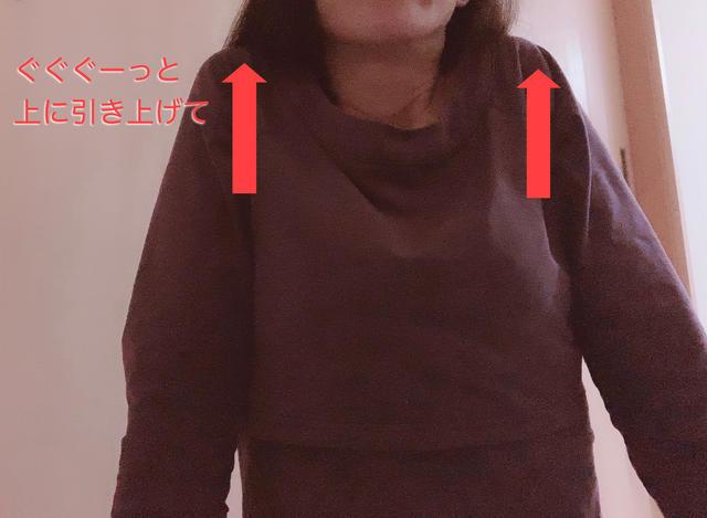 f:id:haruyui_rie:20200212133854j:plain