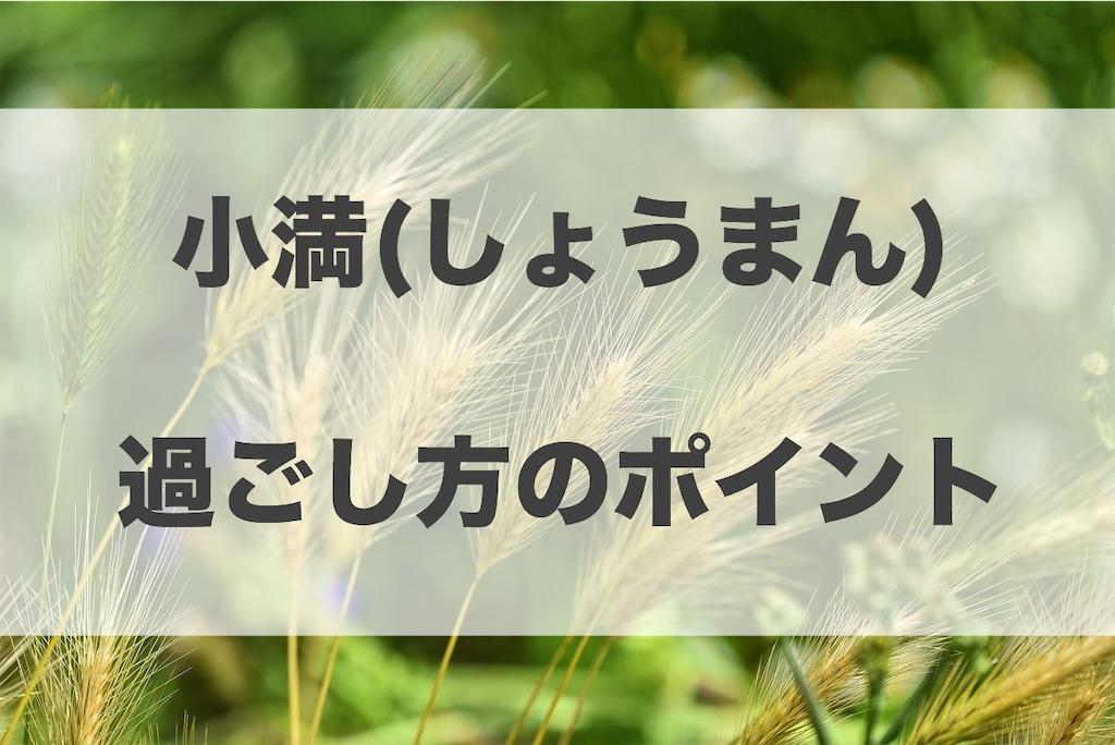 f:id:haruyui_rie:20200519175153j:image