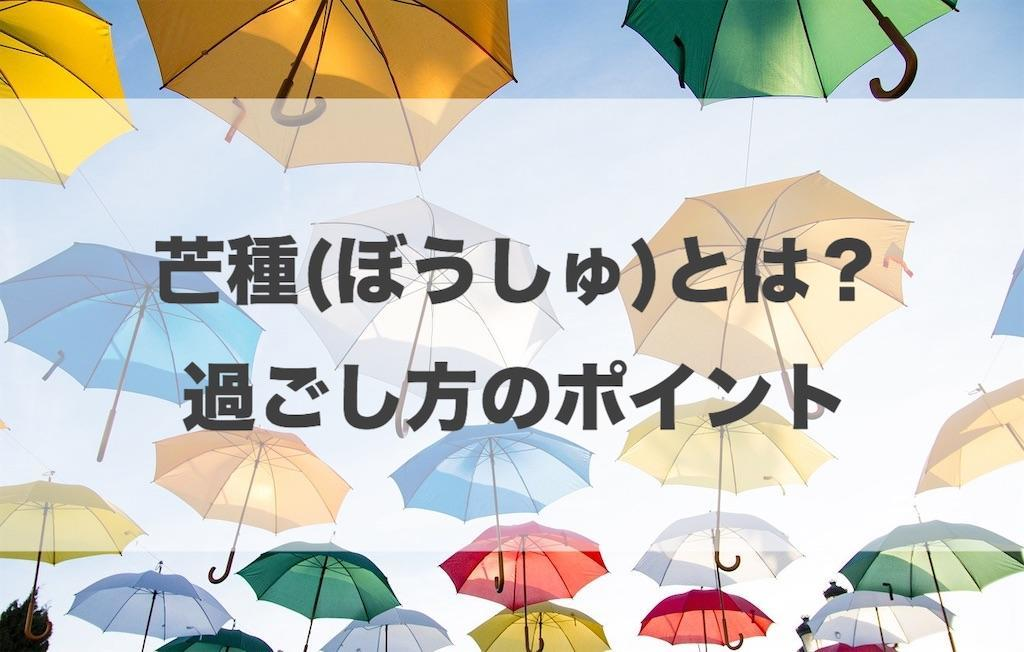f:id:haruyui_rie:20200604151000j:image