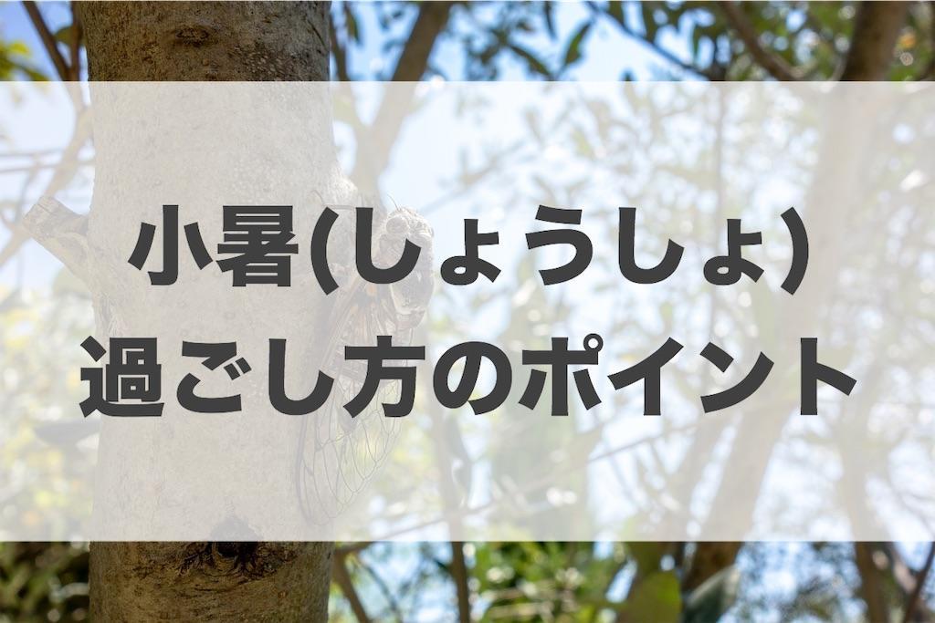 f:id:haruyui_rie:20200707135825j:image