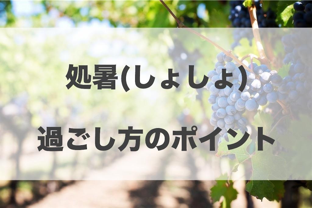 f:id:haruyui_rie:20200824091351j:image