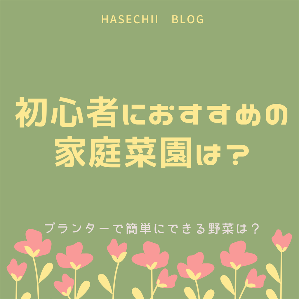 f:id:hasechii0730:20200423113341p:image
