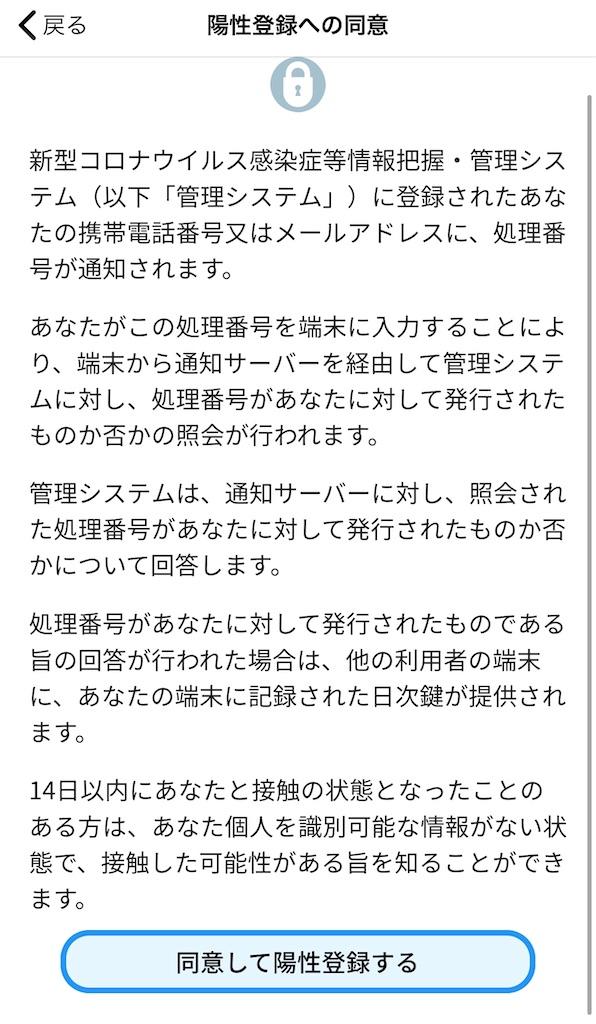 f:id:hasechii0730:20200622095830j:plain