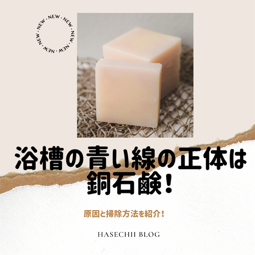 f:id:hasechii0730:20200622115638p:image