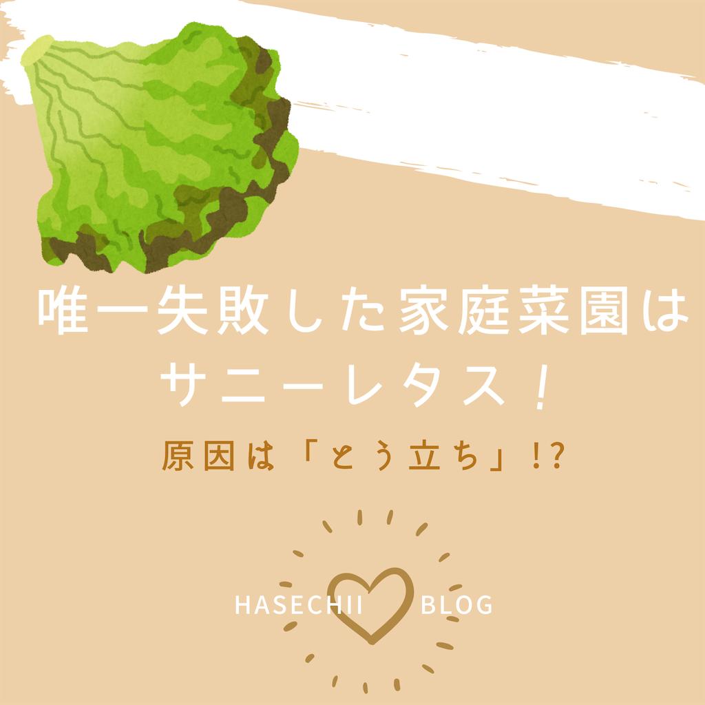 f:id:hasechii0730:20200805110305p:image