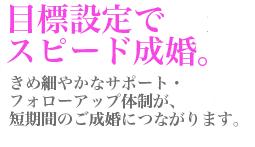 f:id:hasegawa1980:20170526214631p:plain