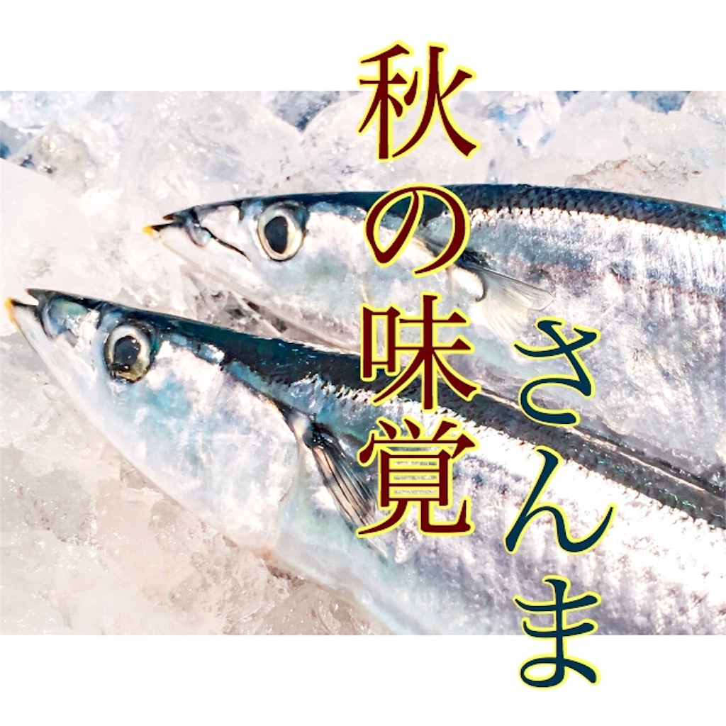 f:id:hasegawa36:20181028205855j:image
