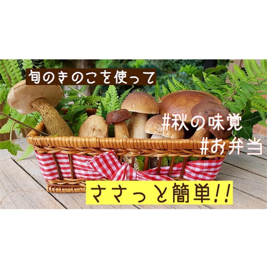 f:id:hasegawa36:20181029134657j:image