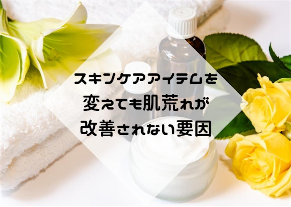 f:id:hasegawa36:20181124165831p:image