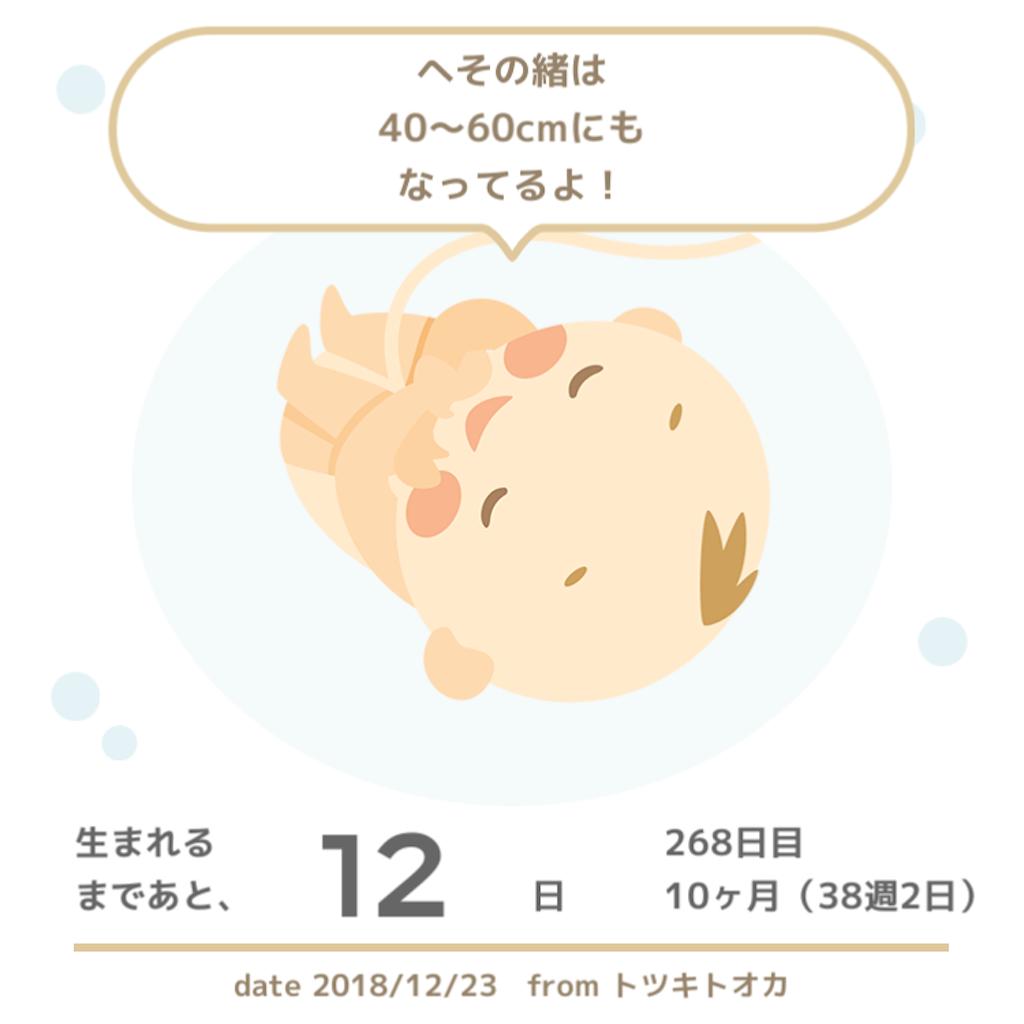 f:id:hasegawa36:20181223160226p:image