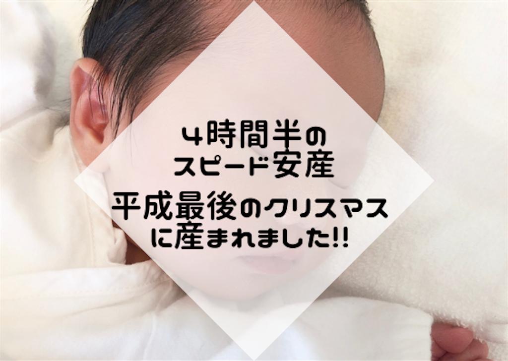 f:id:hasegawa36:20181228165031p:image