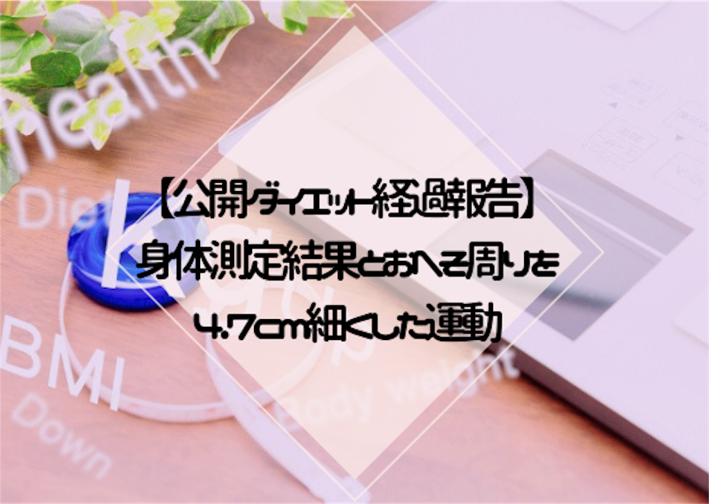 f:id:hasegawa36:20190311121721p:image
