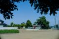 2010年6月5日の写真