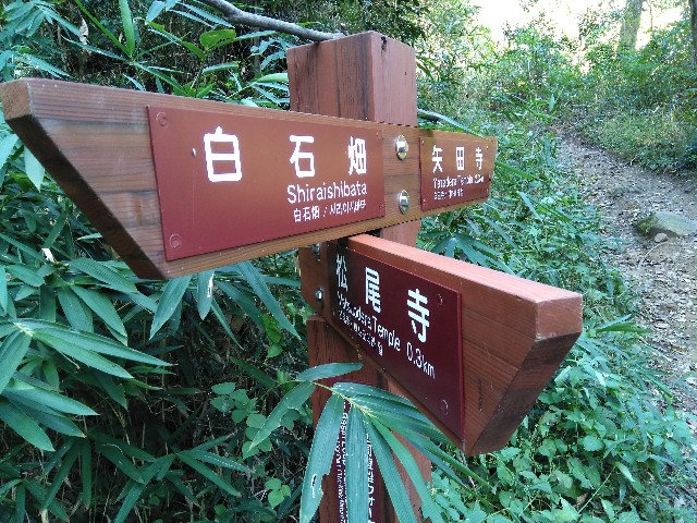 f:id:hashimoto_clinic:20201025190837j:image