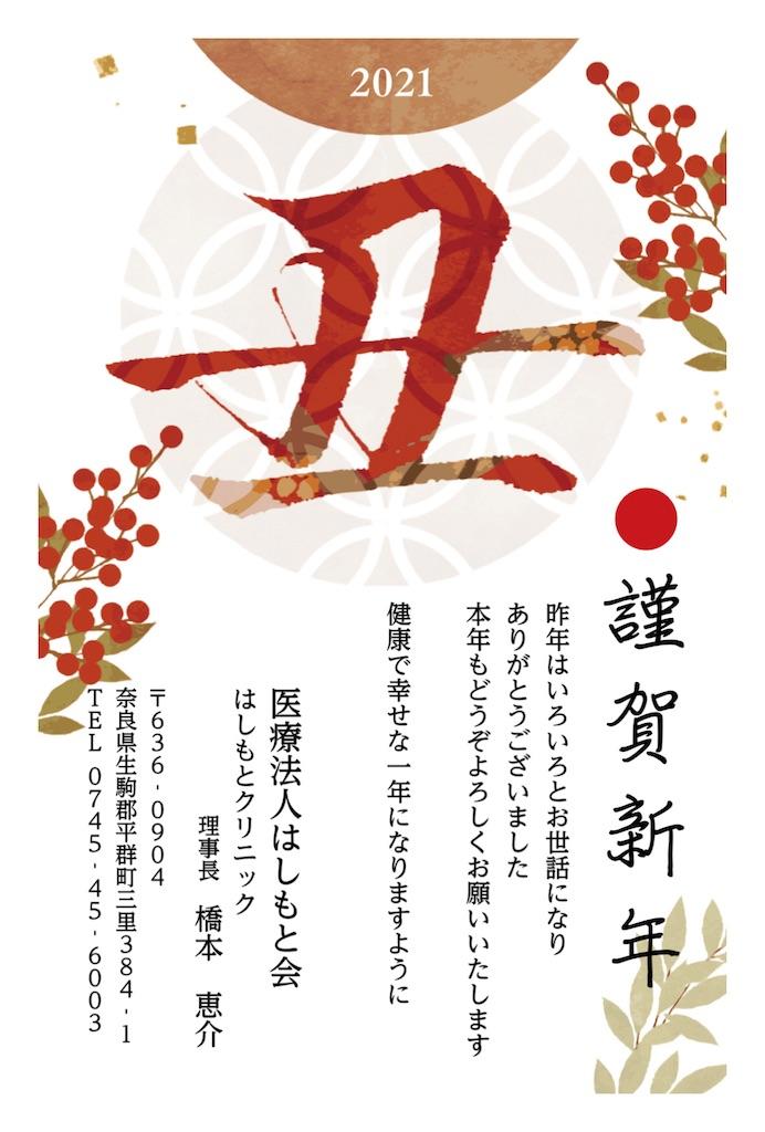f:id:hashimoto_clinic:20210101201715j:image