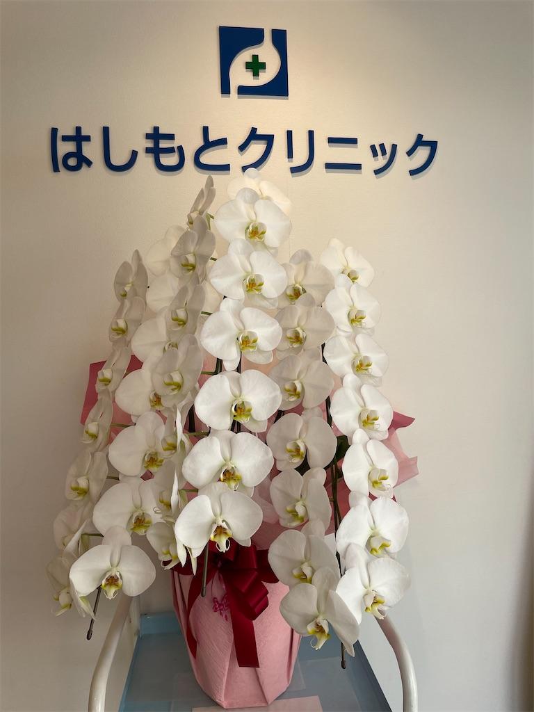 f:id:hashimoto_clinic:20210513223725j:image
