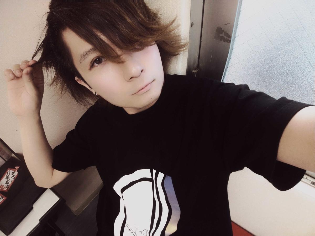 f:id:hashimoto_neko:20190409144402j:plain