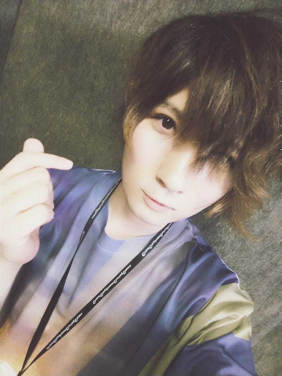f:id:hashimoto_neko:20190504024017j:plain