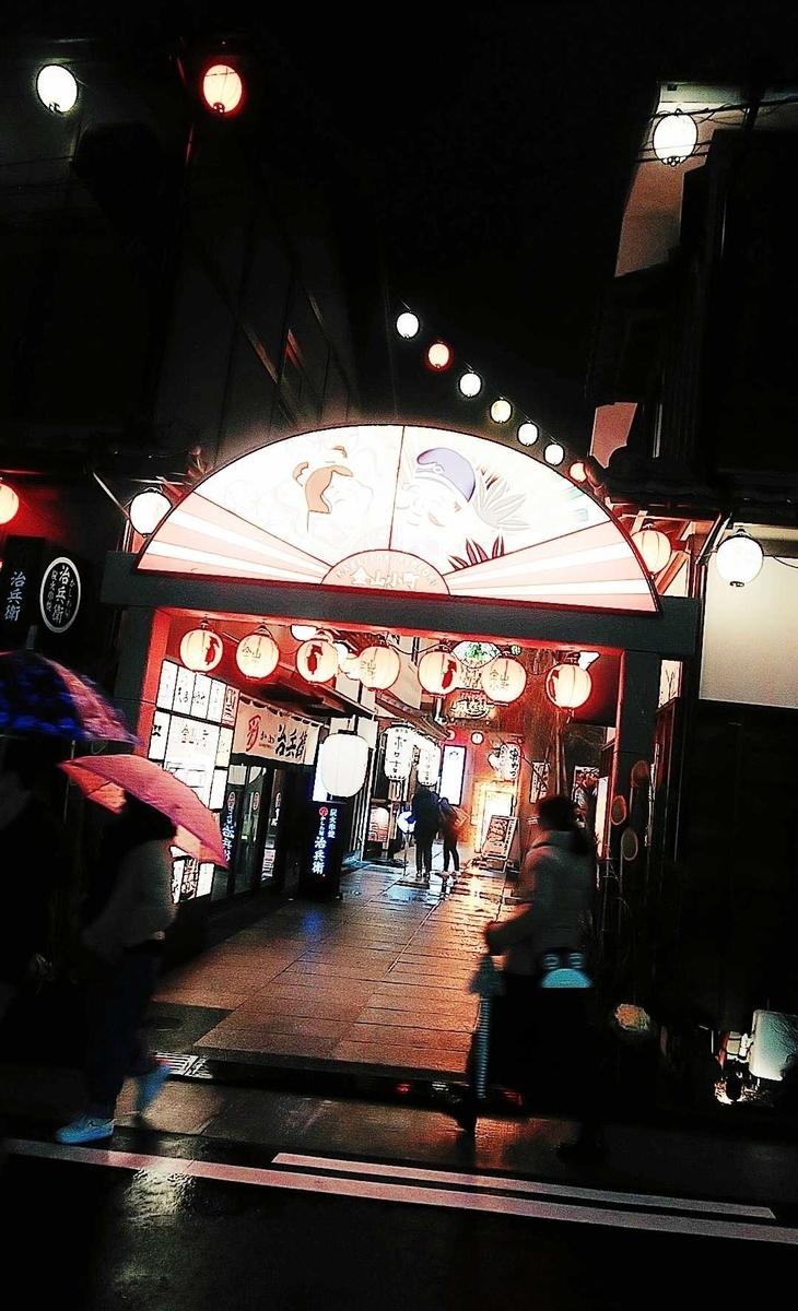 f:id:hashimoto_neko:20200108030209j:plain