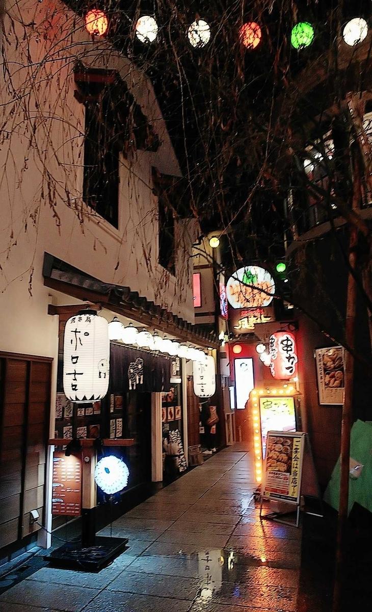 f:id:hashimoto_neko:20200108030728j:plain