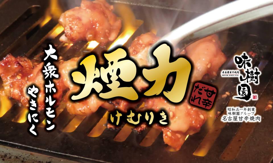 f:id:hashimoto_neko:20200108032527j:plain