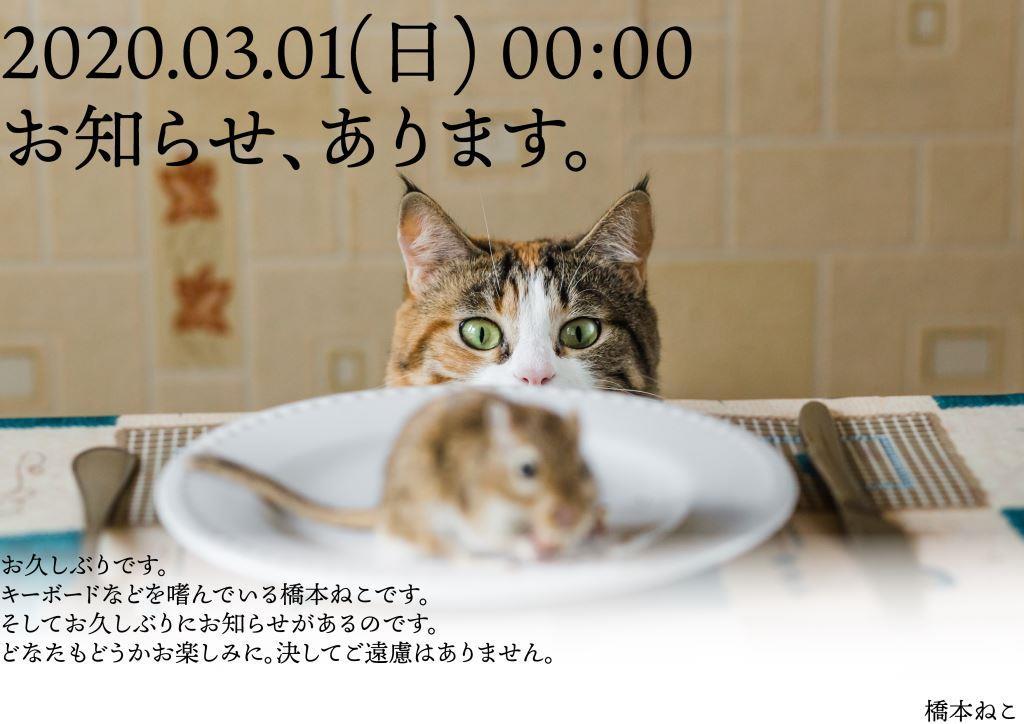 f:id:hashimoto_neko:20200227023804j:plain