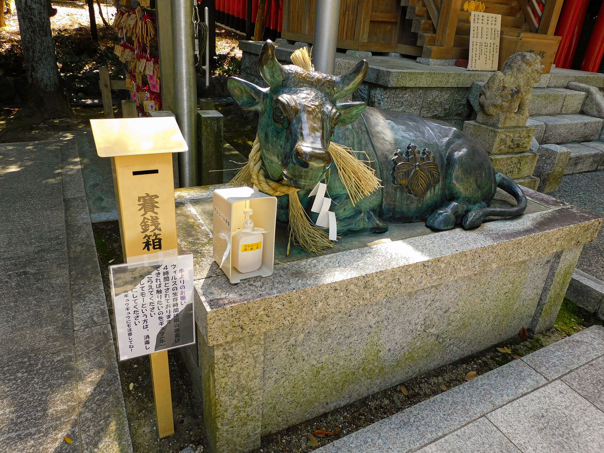 f:id:hashimoto_neko:20210323230251j:plain