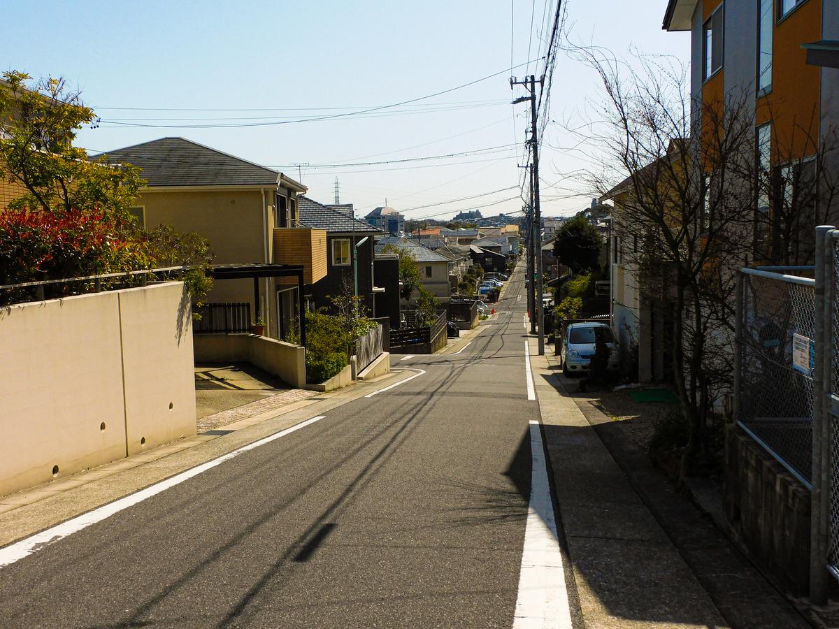 f:id:hashimoto_neko:20210323232930j:plain