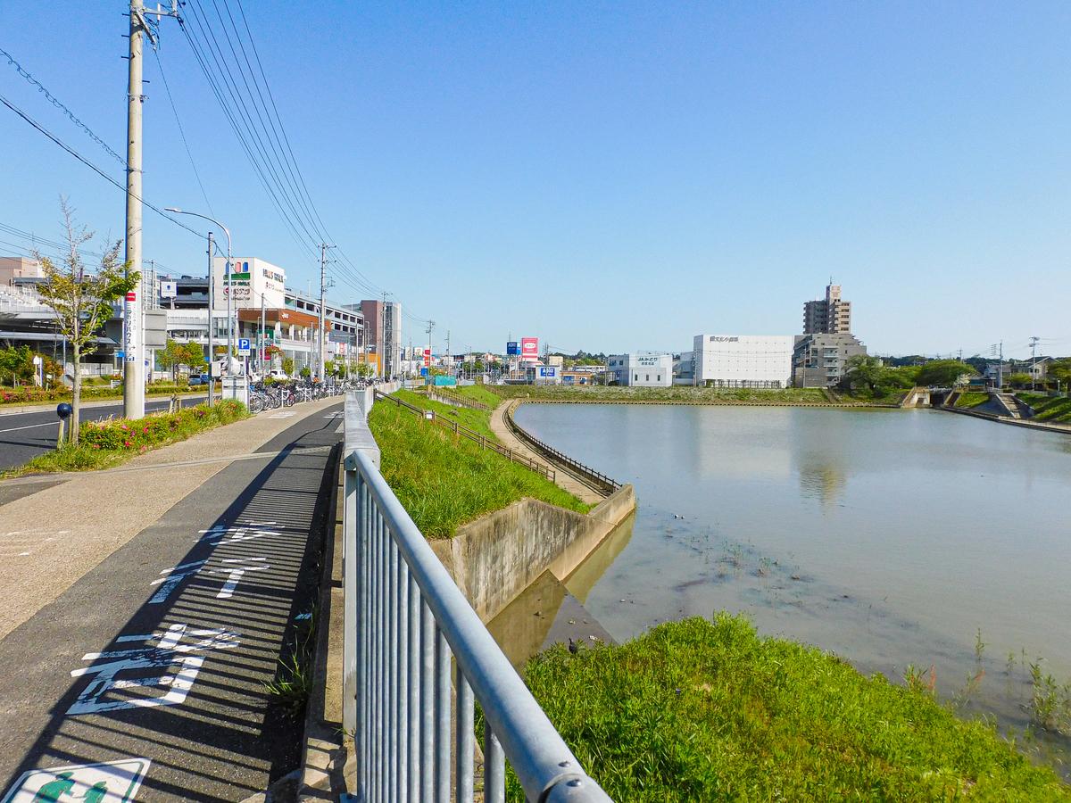 f:id:hashimoto_neko:20210426114104j:plain